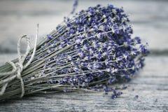 Boeket van droge lavendel Royalty-vrije Stock Afbeeldingen