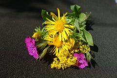 Boeket van gebieds het wilde bloemen royalty-vrije stock afbeelding