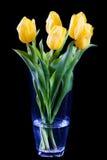 Boeket van gele die tulpen op zwarte worden geïsoleerdt Stock Afbeeldingen
