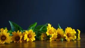 Boeket van gele grote madeliefjes