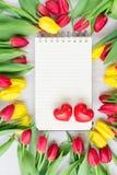 Boeket van gele, purpere en rode tulpen Stock Fotografie