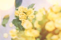 boeket van gele rozen in zonlicht - de lente, moeder\ 's dag en vakantieconcept stock afbeelding