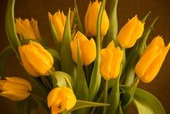 Boeket van gele tulpen Royalty-vrije Stock Foto