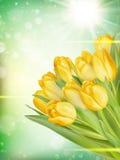 Boeket van gele tulpen Eps 10 Royalty-vrije Stock Afbeelding