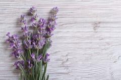 Boeket van geurige lavendelbloemen Bloemen frame Stock Foto's