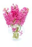 Boeket van hyacinten Stock Foto