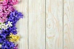 Boeket van hyacinten Royalty-vrije Stock Afbeeldingen
