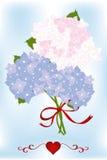 Boeket van hydrangea hortensiabloemen en groene bladeren met rood hart Stock Fotografie