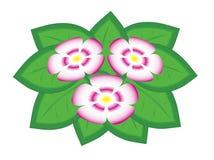 Boeket van ingediende bloemen royalty-vrije stock afbeeldingen