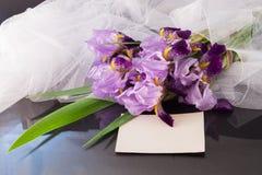 Boeket van irissen met een sluier op de donkere glanzende achtergrond Royalty-vrije Stock Afbeeldingen