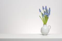 Boeket van kleine Druif Hyacints in wit Royalty-vrije Stock Afbeeldingen