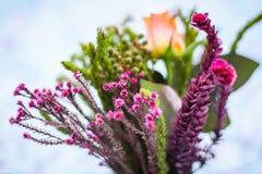Boeket van kleurrijke bloemen Stock Foto