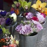 Boeket van kleurrijke de lentebloemen tulp, ranunculus, hyacint, royalty-vrije stock afbeeldingen