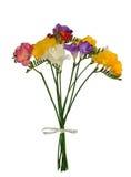Boeket van kleurrijke die de lentefresia op wit wordt geïsoleerd Royalty-vrije Stock Foto