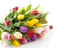 Boeket van kleurrijke Nederlandse tulpen Stock Foto