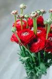 Boeket van kleurrijke ranunculus van boterbloemen rode bloemen op witte Achtergrond Rustieke stijl Stock Fotografie