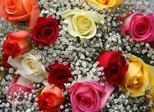 Boeket van kleurrijke rozen Stock Foto