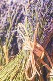 Boeket van lavendelfowers in aardige uitstekende stijl Royalty-vrije Stock Fotografie