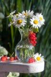 Boeket van madeliefjebloemen stock foto's