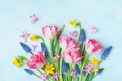 Boeket van mooie de lentebloemen op de bovenkantmening van de pastelkleur blauwe lijst Groetkaart voor Internationale Vrouwendag  royalty-vrije stock afbeelding