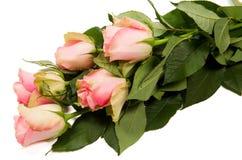 Boeket van mooie rozen Stock Foto's