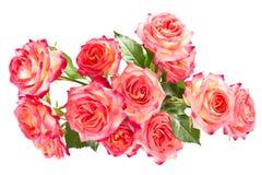 Boeket van mooie rozen. Stock Fotografie