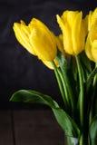 Boeket van mooie verse gele tulpen in dauw op donkere achtergrond stock foto