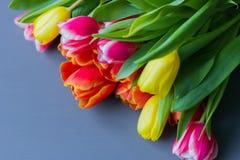 Boeket van multicolored tulpen op een grijze achtergrond stock afbeeldingen