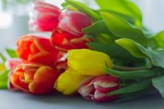 Boeket van multicolored tulpen op een grijze achtergrond royalty-vrije stock foto's