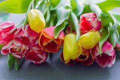 Boeket van multicolored tulpen op een grijze achtergrond stock foto