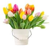 Boeket van multicolored tulpenbloemen in wit Stock Foto's