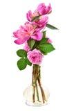 boeket van pioenen met rozen Stock Fotografie