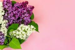 Boeket van purpere en witte lilac bloemen op koraal roze achtergrond De ruimte van het exemplaar Hoogste mening De zomerachtergro royalty-vrije stock afbeeldingen