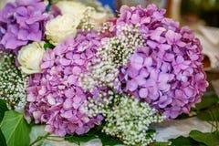 Boeket van purpere hydrangea hortensia's Het concept is een vakantie, een weddin Stock Foto