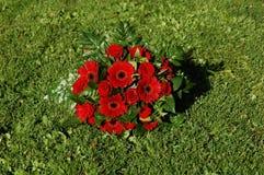 Boeket van rode bloemen Stock Foto's