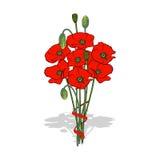 Boeket van rode die papavers, met een lint wordt gebonden royalty-vrije illustratie