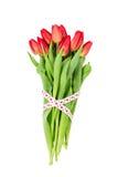 Boeket van rode die tulpen met hartenlint worden verfraaid Geïsoleerd over wit Het concept van de Dag van valentijnskaarten Stock Foto