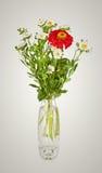 Boeket van rode madeliefje-gerbera en witte aster in glasvaas Royalty-vrije Stock Foto