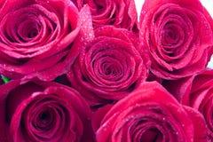 Boeket van rode rozen Stock Afbeelding