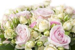 Boeket van rode rozen Stock Foto