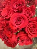 Boeket van rode rozen royalty-vrije stock fotografie