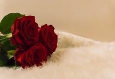 Boeket van rode rozen die op een wit tapijt romantisch symbool leggen van liefde en appreciatie op valentijnskaartendag royalty-vrije stock afbeelding