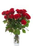 Boeket van rode rozen in geïsoleerde vaas Royalty-vrije Stock Foto