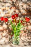 Boeket van rode tulpen in een glaskruik stock foto's