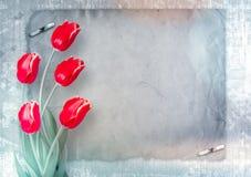 Boeket van rode tulpen met groene bladeren op abstract document backgr Stock Fotografie