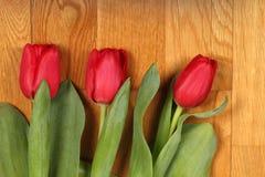 Boeket van rode tulpenbloemen Stock Afbeelding