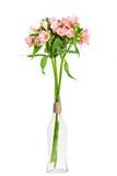 Boeket van roze alstroemeria in glasvaas Royalty-vrije Stock Foto's
