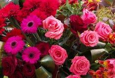 Boeket van roze bloemen Royalty-vrije Stock Afbeeldingen