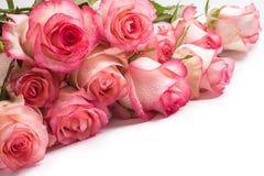 Boeket van roze roze bloemen op witte achtergrond Stock Afbeeldingen