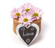 Boeket van roze bloemen op witte achtergrond Stock Foto's